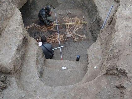 На Кубани в ст. Новопокровской найдены останки древних людей-великанов
